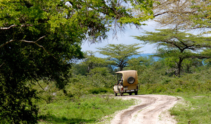 Africa luxury holidays