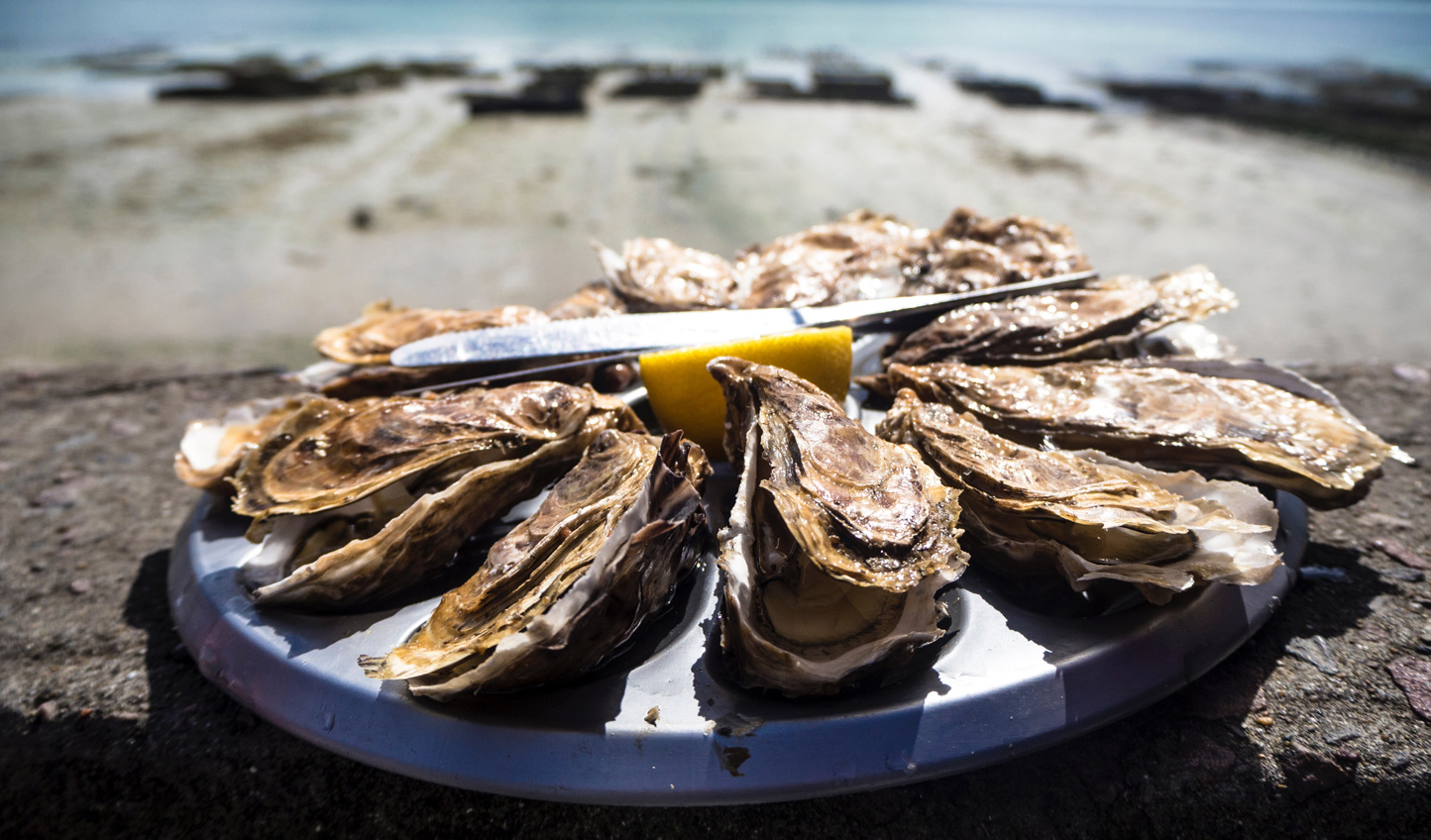 Sample freshly shucked oysters in Ston