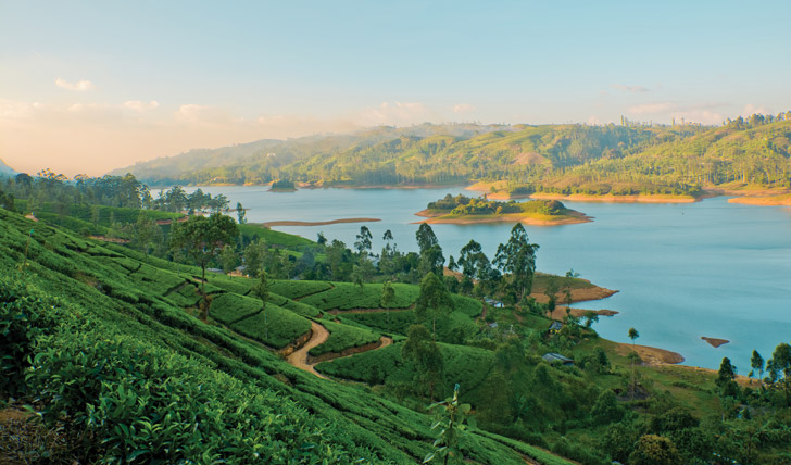 Watch the sun set over the tea plantations