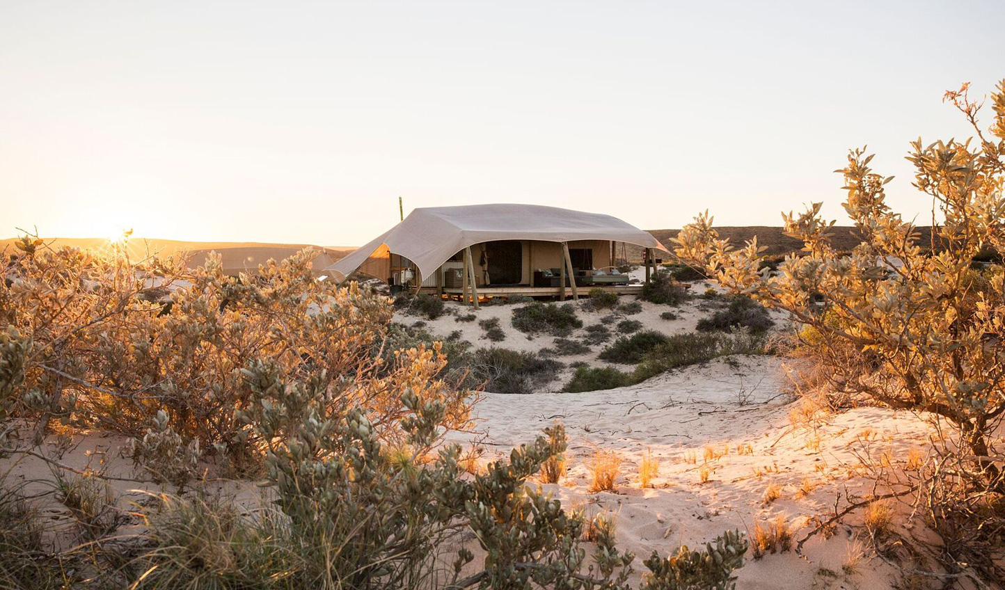 Discover the beauty of Western Australia in eco-luxury at Sal Salis