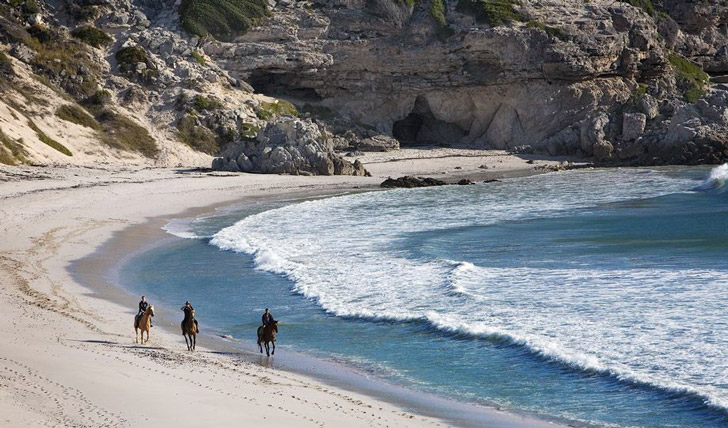 Horse ride on the beaches of Hermanus