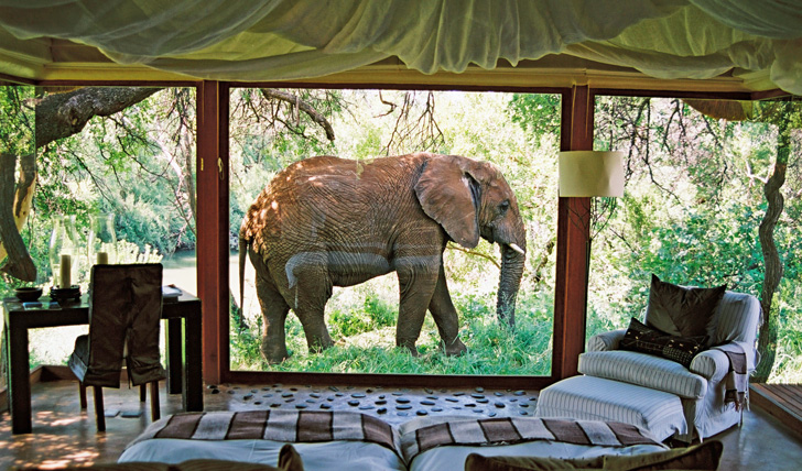 Luxury holidays in South Africa