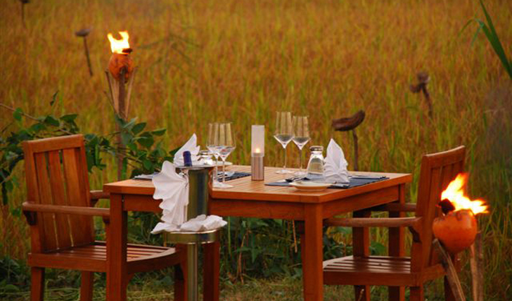 dine by the paddy fields and eat traditional sri lankan curry