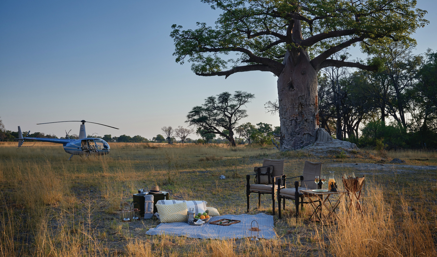Get a whole new perspective on a helicopter safari