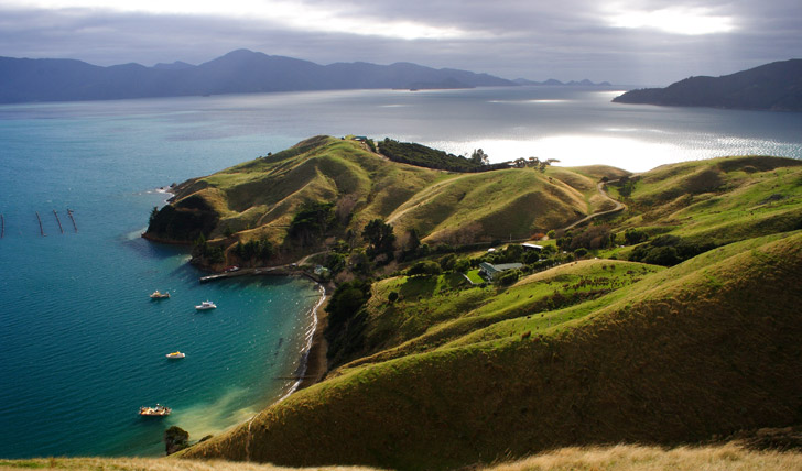 Trip to New Zealand - Black Tomato