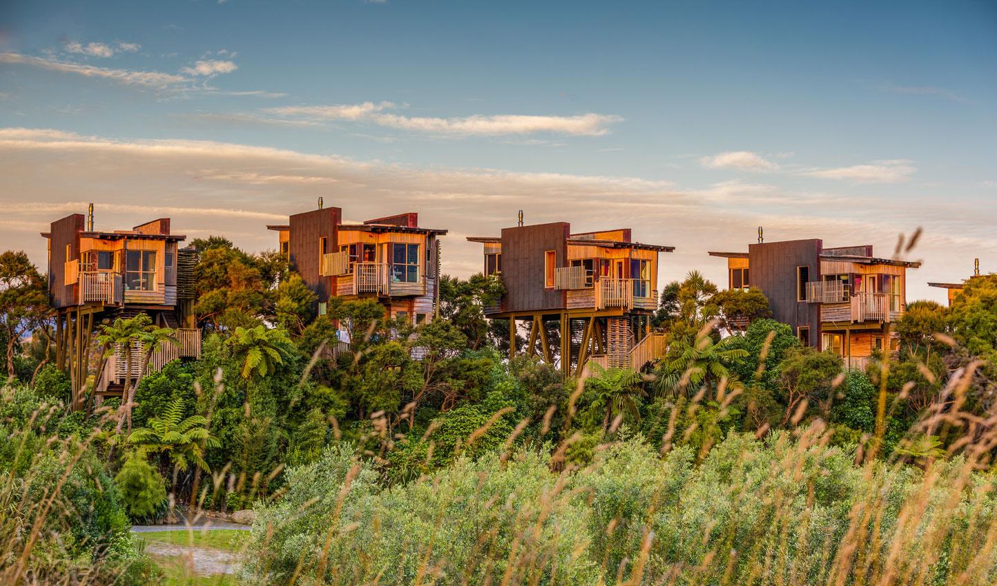 Luxury treehouse Living at Hapuku Lodge