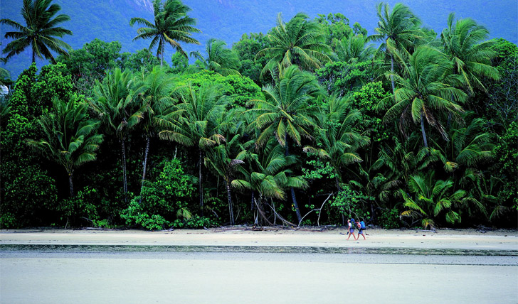 Dunk Island Holidays: A Mission Beach Holiday In North Queensland