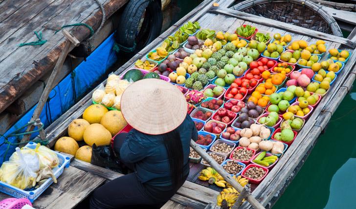 Trip to Vietnam - Black Tomato