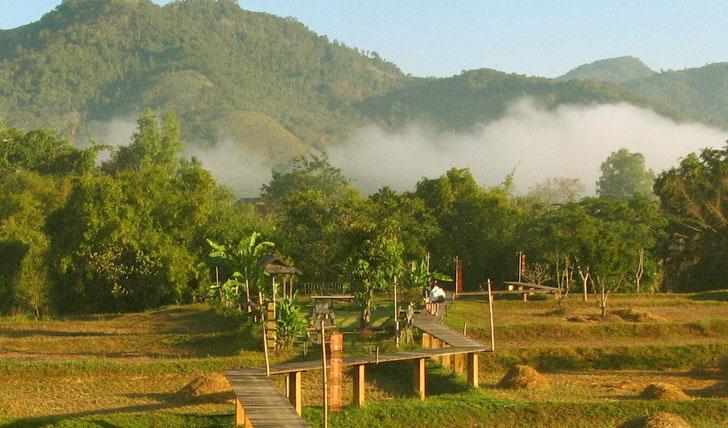 Thai hills in rolling mist
