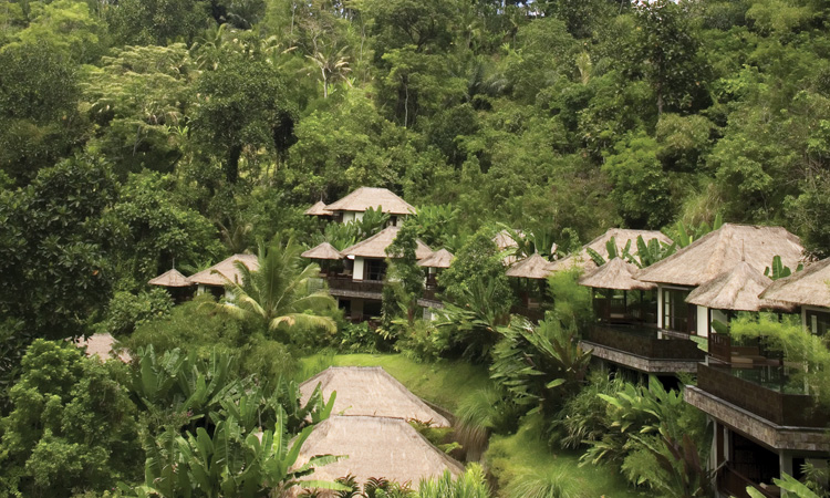 blending in with nature in ubud