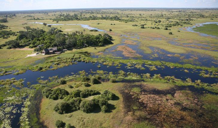 Selinda canoe trail Botswana