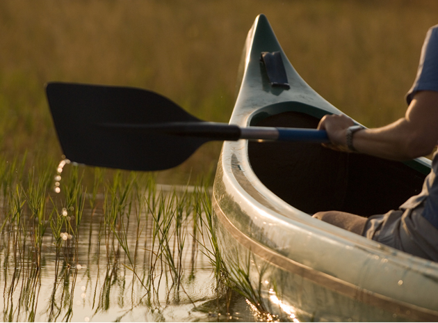 canoe on the selinda canoe trail