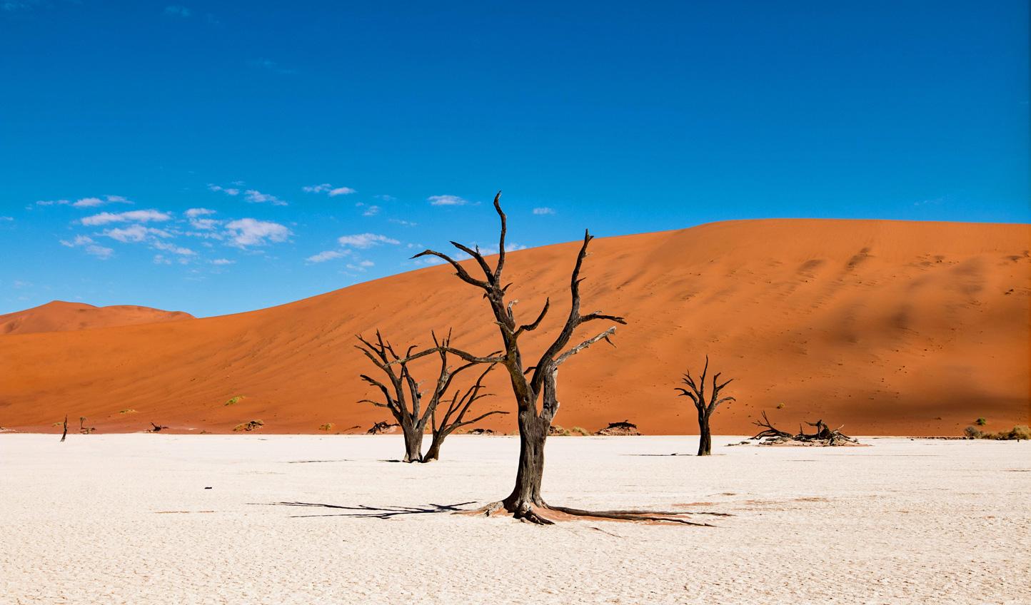 Take in Namibia's otherworldly landscapes
