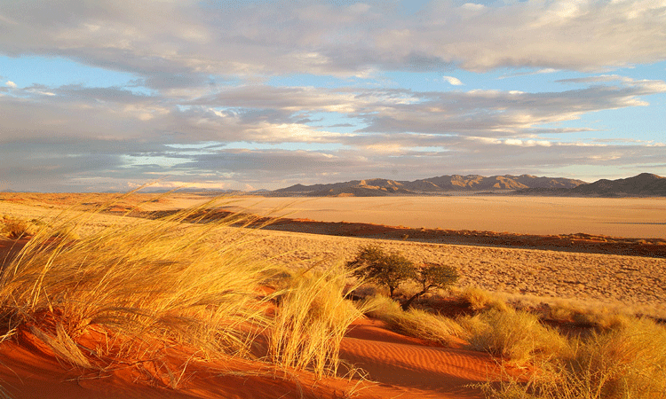 View of the Namibian landscape