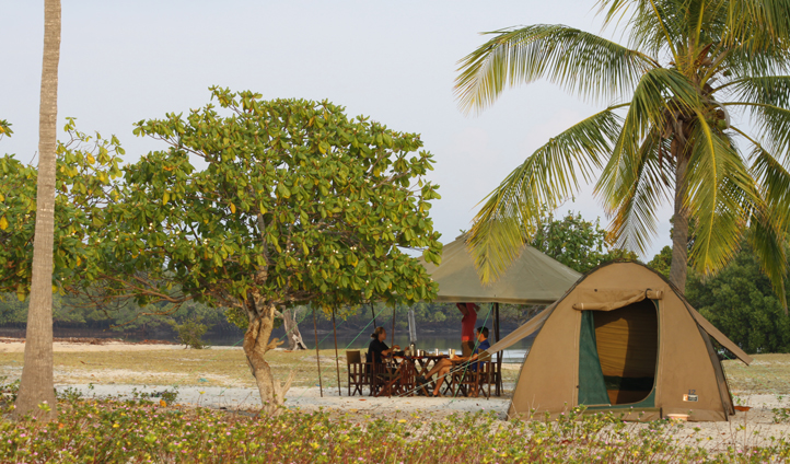 Your private camp under the palm trees  in the Quirimbas