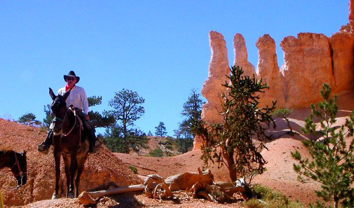 Cowboy holidays in Colorado