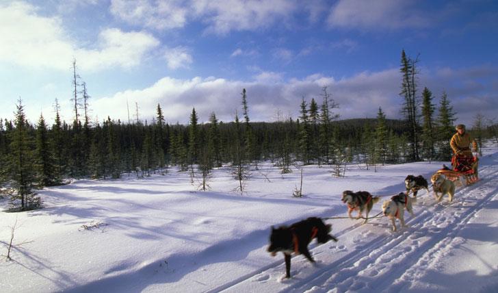 Ontario winter landscape