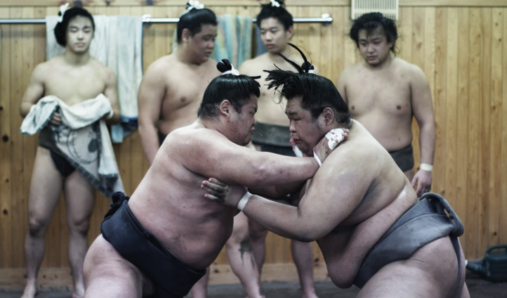 Sumo's in action