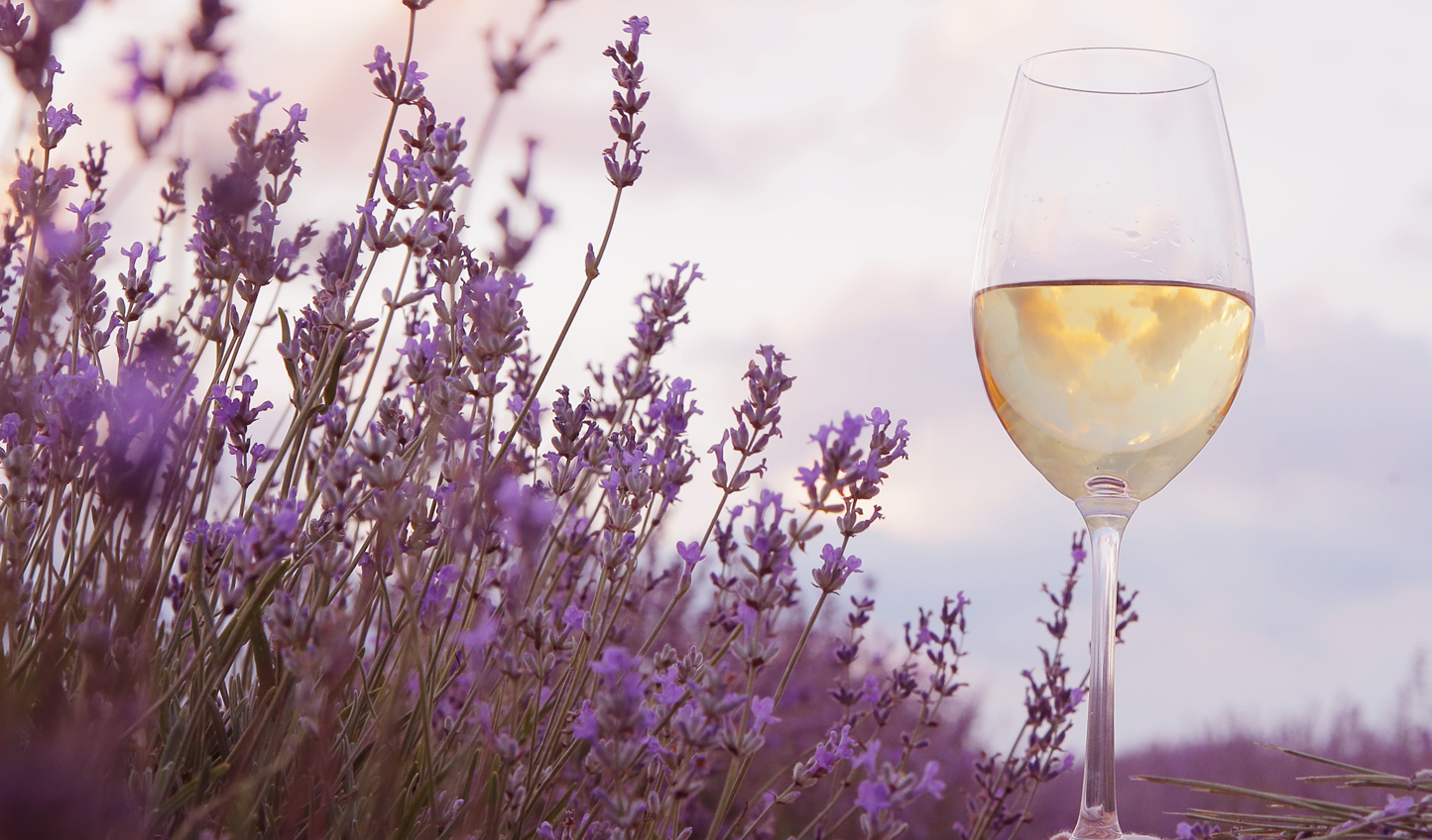 Crisp wines in fragrant fields