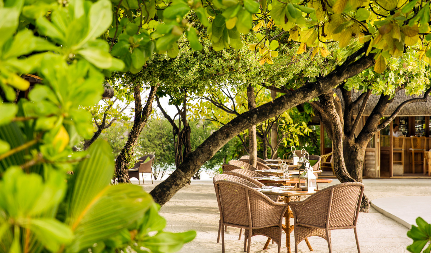 Dine beneath the shade of the canopy