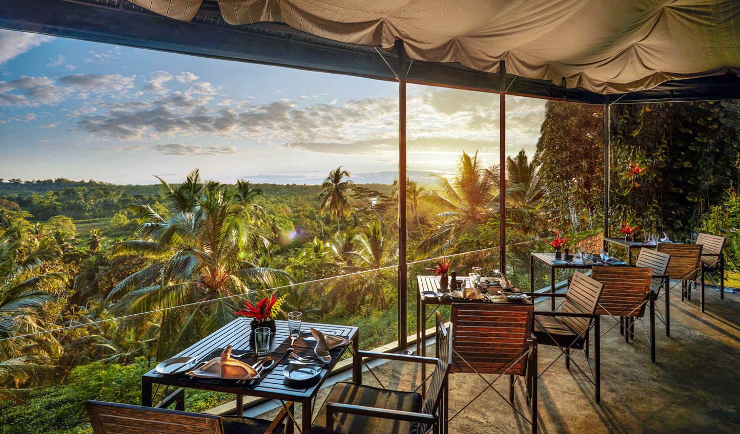 Dine with a view out across the estate