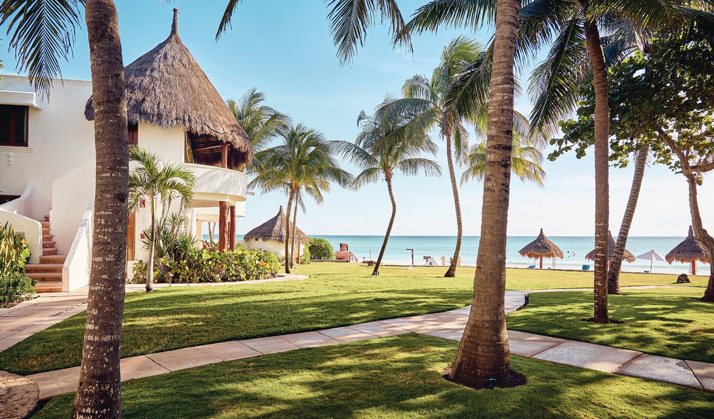 Stroll the tropical gardens