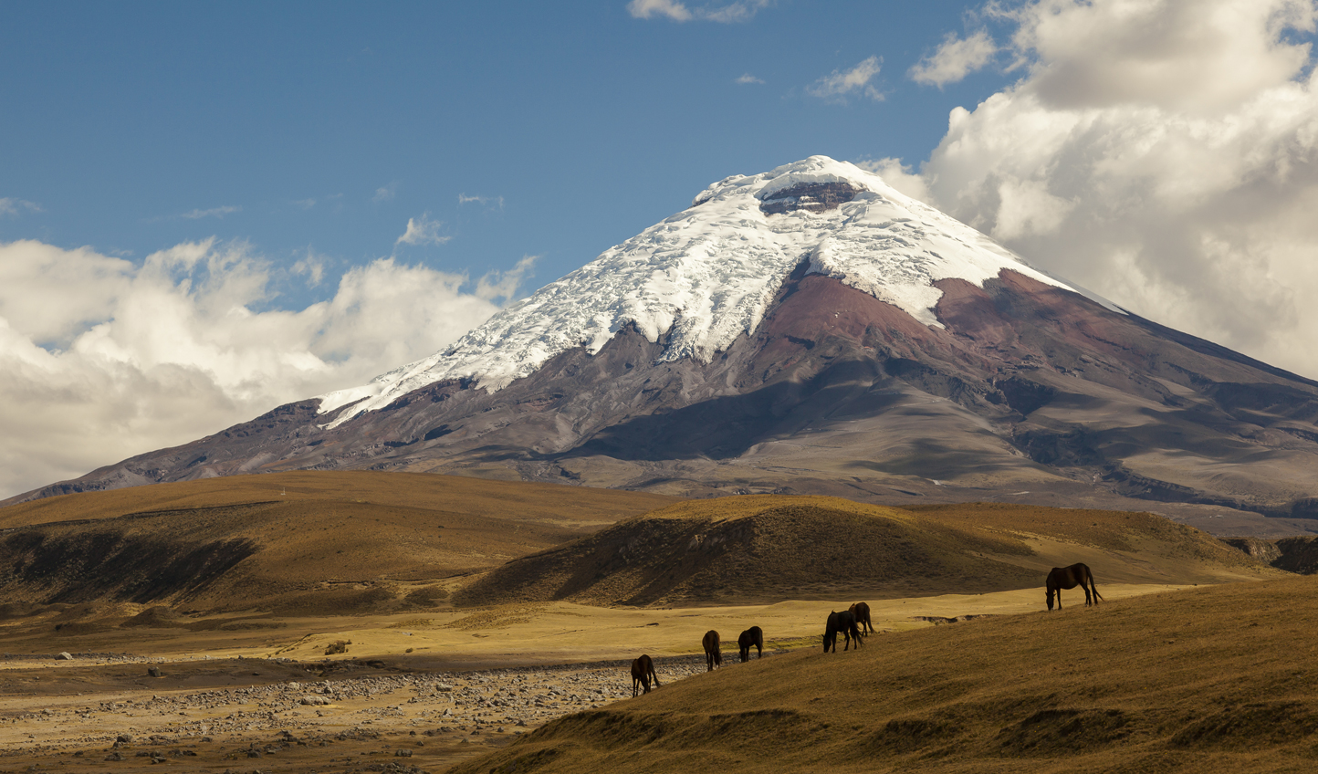 Escape the city and head out to Cotopaxi