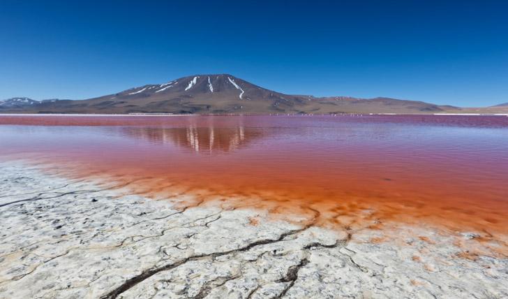 The incredible colours of Laguna Colorada, Bolivia