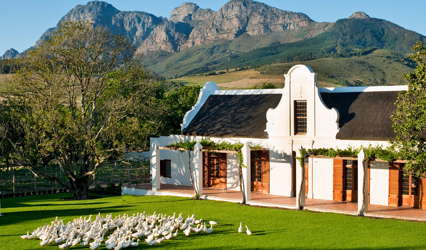 Relax into the good life at Babylonstoren