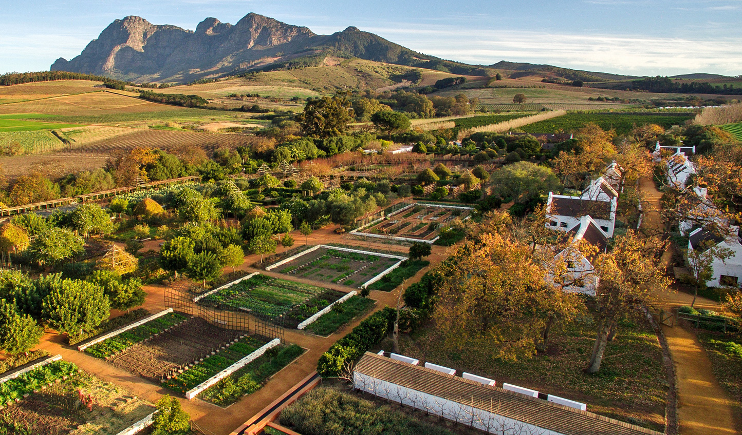 Stroll through the farms at Babylonstoren for a true farm-to-fork experience