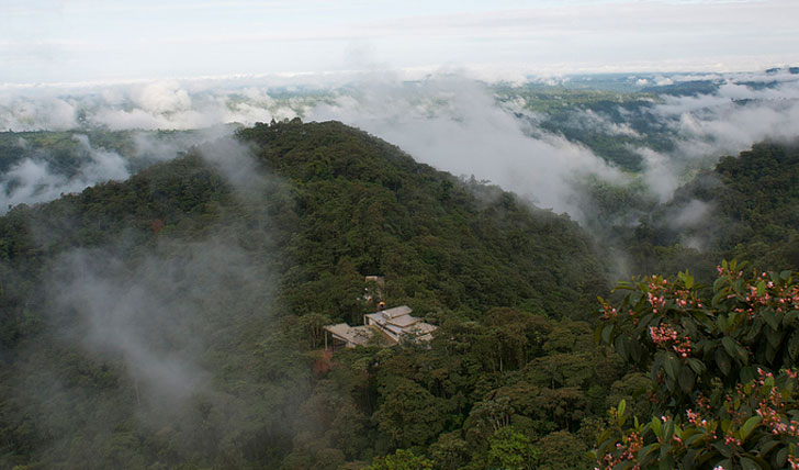 Cloud Forest, Quito