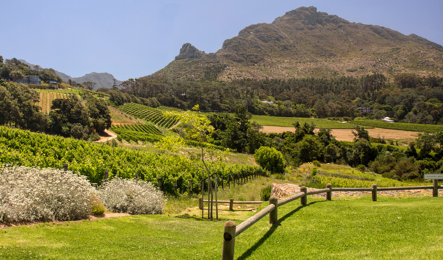 Settle into life on the farm in the Constantia Valley