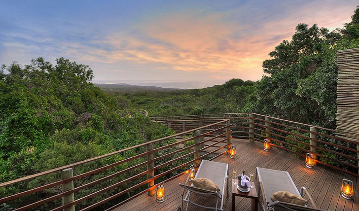 Forest Suite, Grootbos | Black Tomato