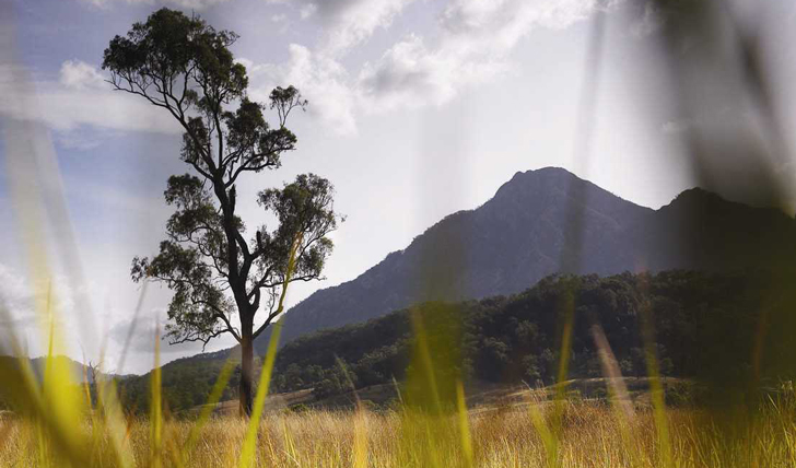 The aptly named Scenic Rim, Brisbane