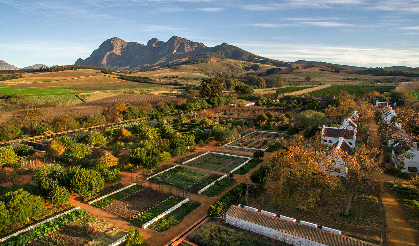Escape Cape Town to the sprawling winelands that surround Babylonstoren