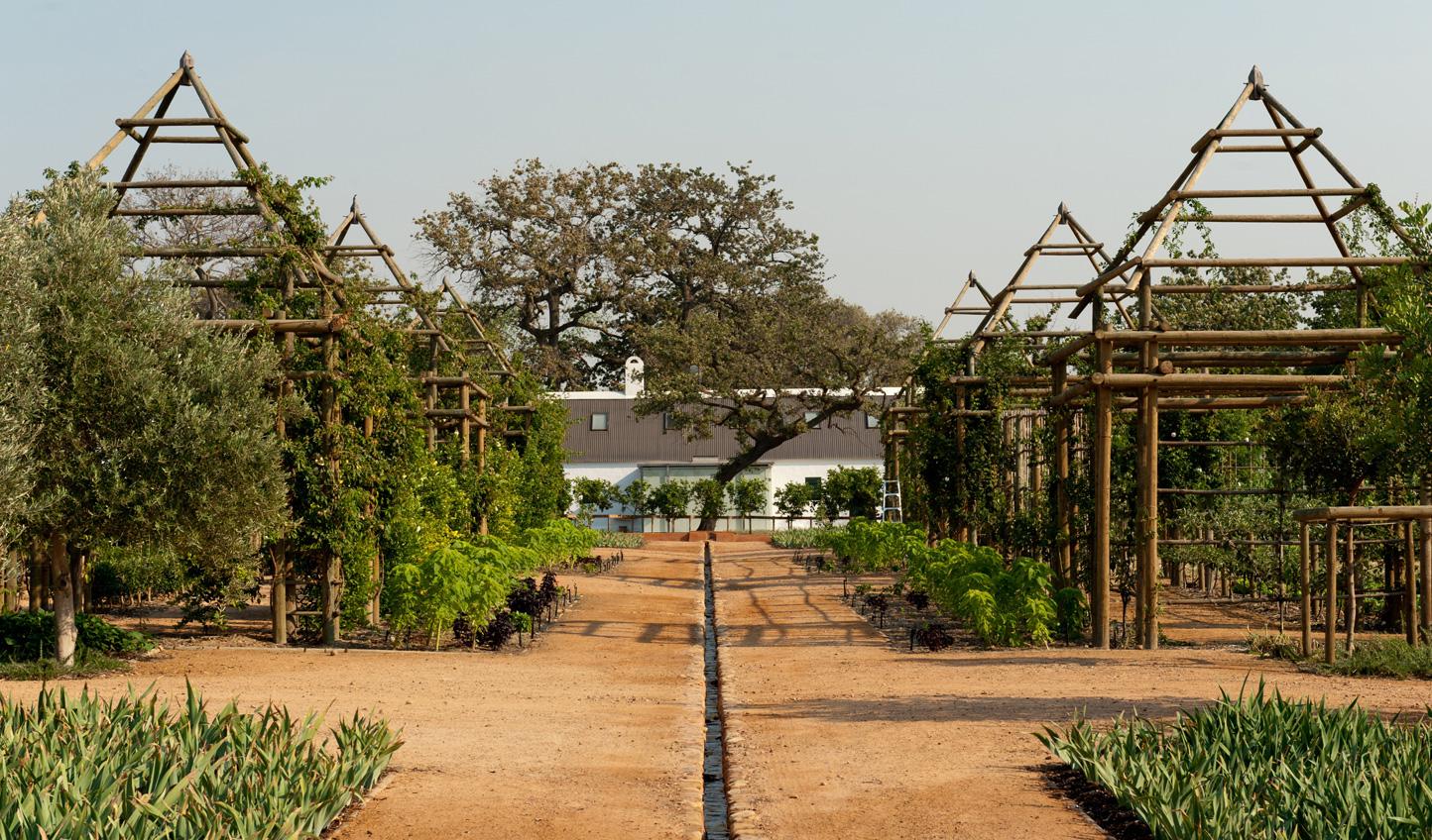 Discover Babylonstoren's beautiful grounds