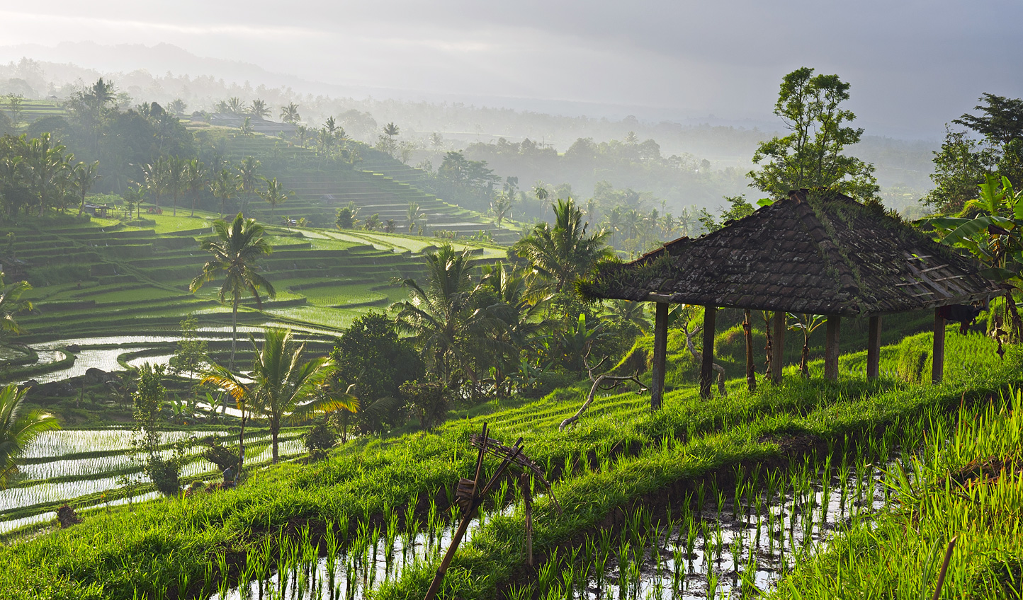 Peace and quiet in Bali's hill country