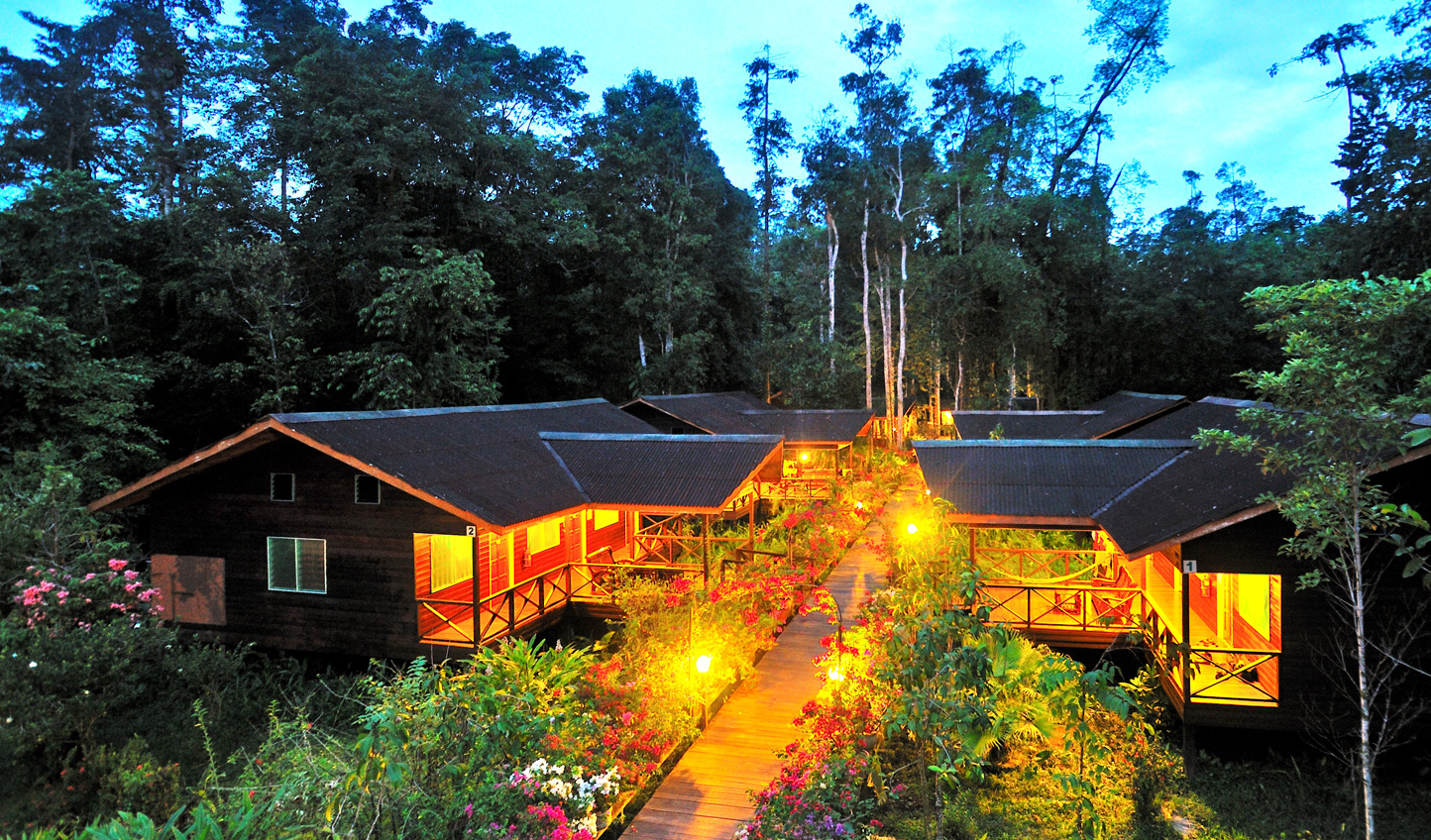 Abai Jungle Lodge