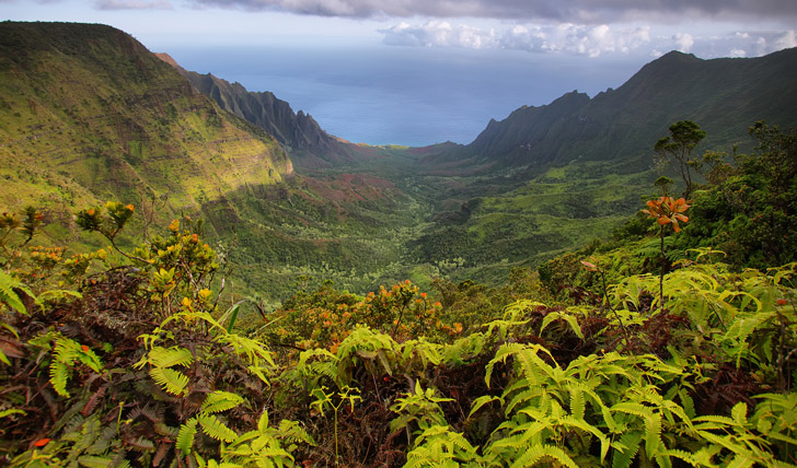 Waipio Valley Beach Big Island Hawaii