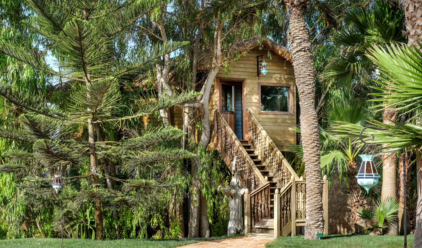 Feel at home in the treetops in a luxury treehouse