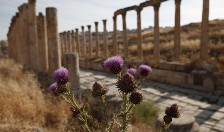 Views in Jerash, Jordan