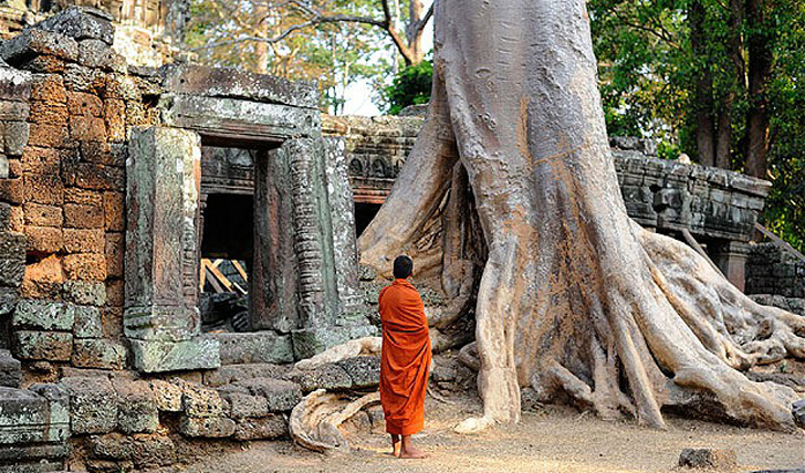 Ta Prohm Temple Cambodia | Black Tomato