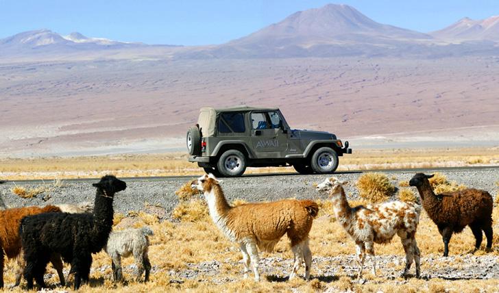 Luxury trip to Chile - Black Tomato