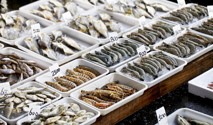 Browse Toyko's fish market