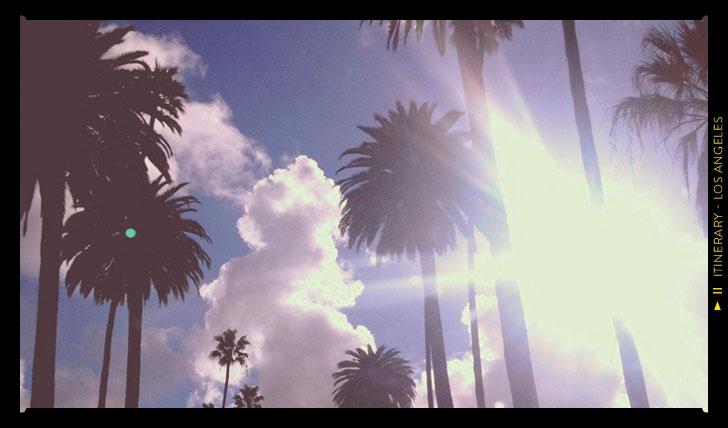 LA sun gazing