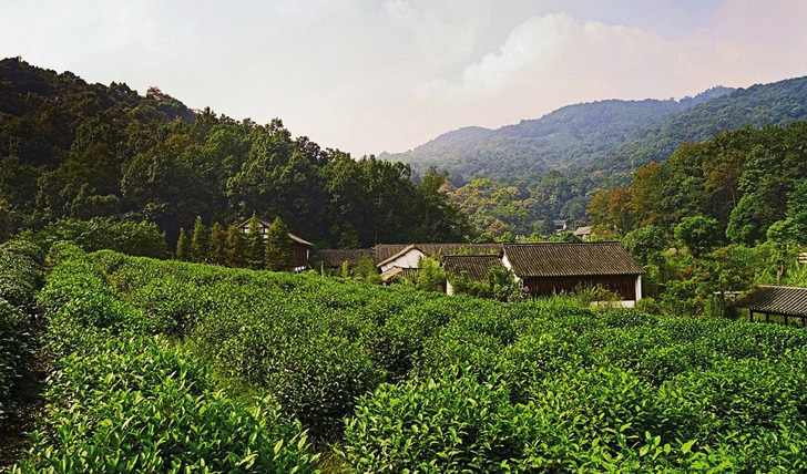 Hangzhou's beautiful natural scenery