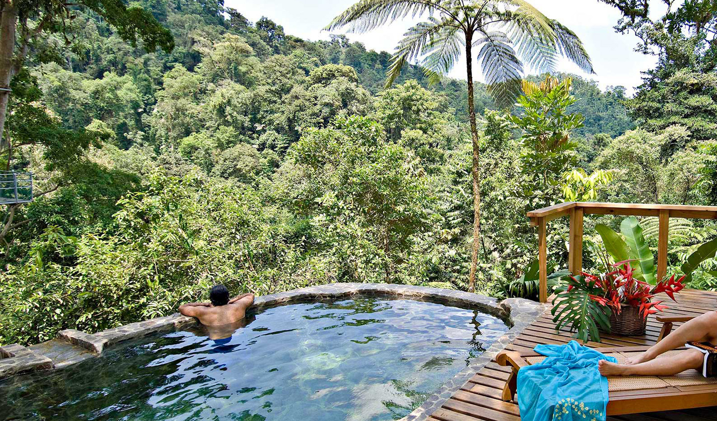 Admire the jungle view from your plunge pool