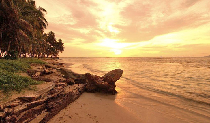 Relax on the beaches of Bocas Del Toro