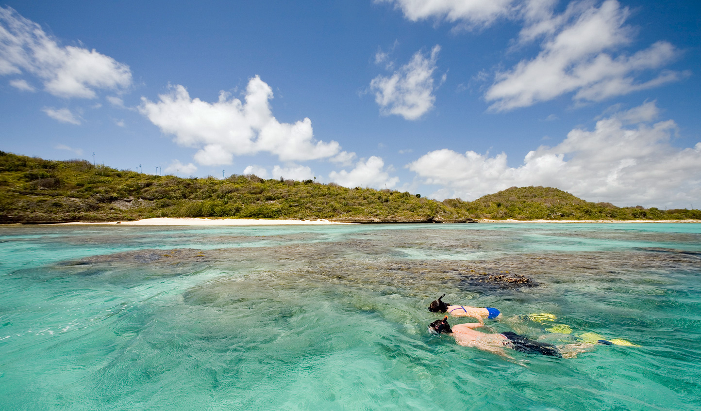 Dive into the colours of the reef below