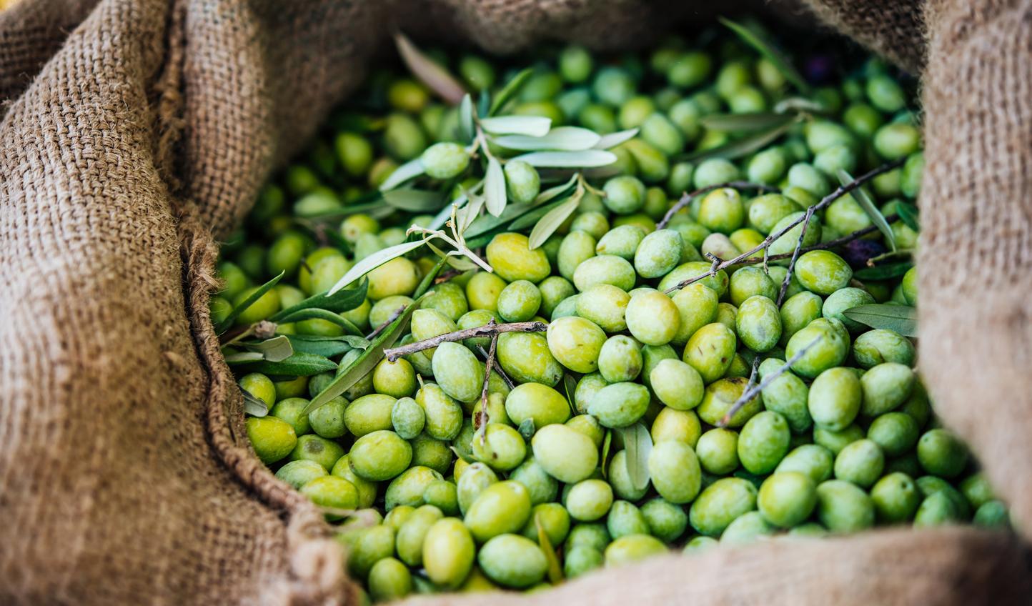 Sicilian-Olives_333921422